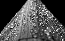 un recuperateur eau de pluie