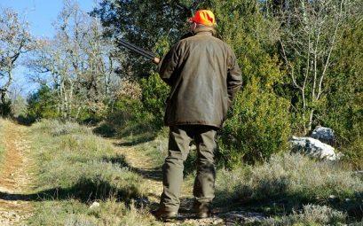 gilet de chasse pour chasser