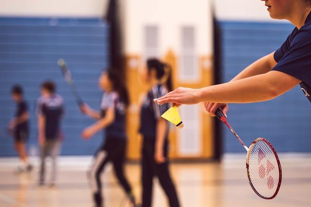 badminton terrain